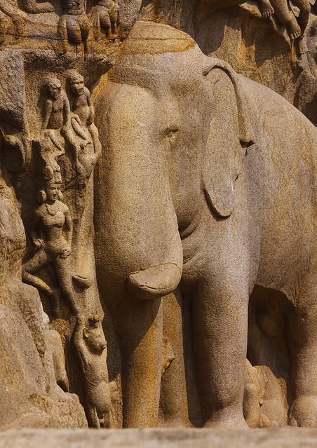 Carving of an elephant on bas relief called arjuna s penan