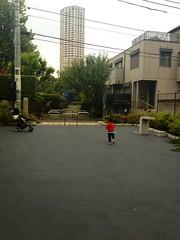 朝散歩 - 原町公園 (2012/10/18)