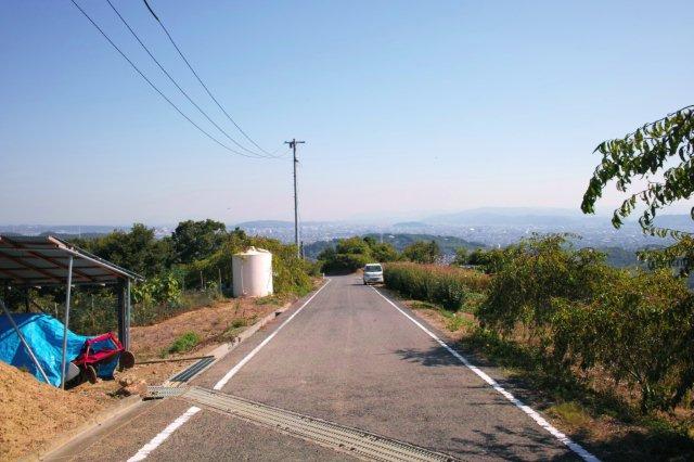 反古山 #4