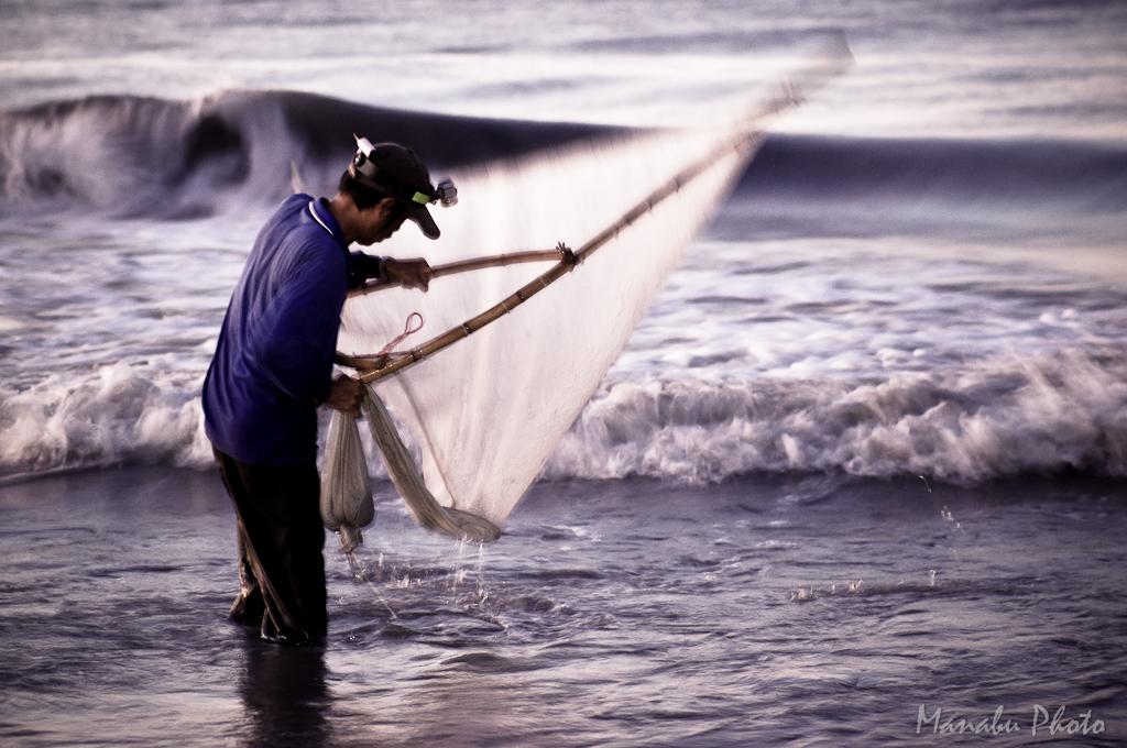 金崙溪撈魚苗