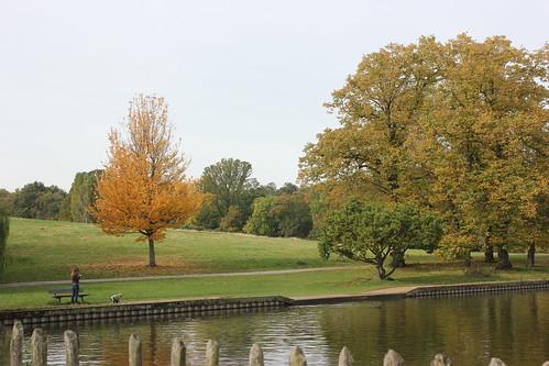 Hampstead Health boating pond