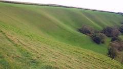 Nip to Dorset.