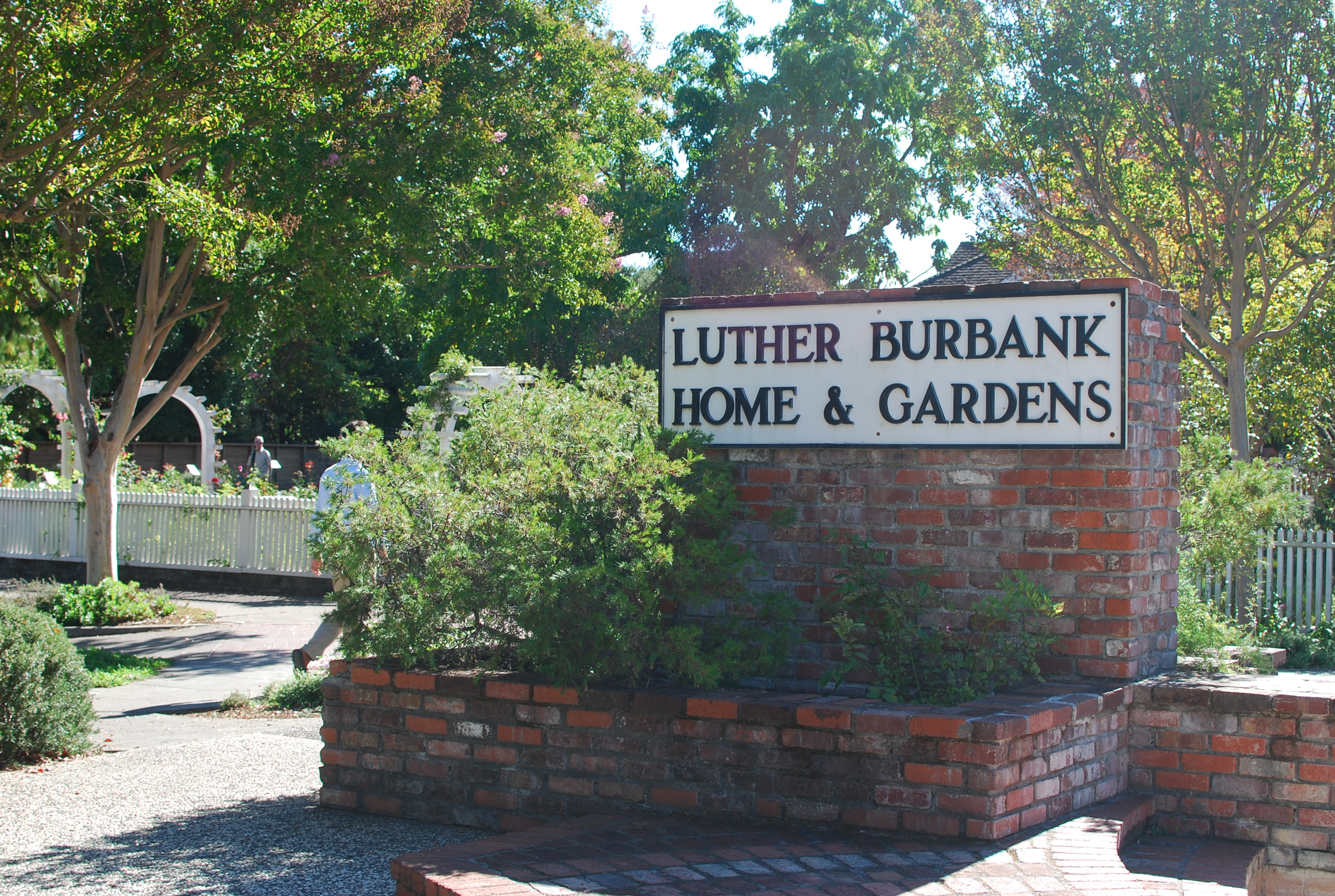 Luther Burbank Home Gardens Explore Cbcastro 39 S Photos On Flickr Photo Sharing