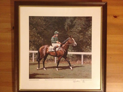 Shergar photo