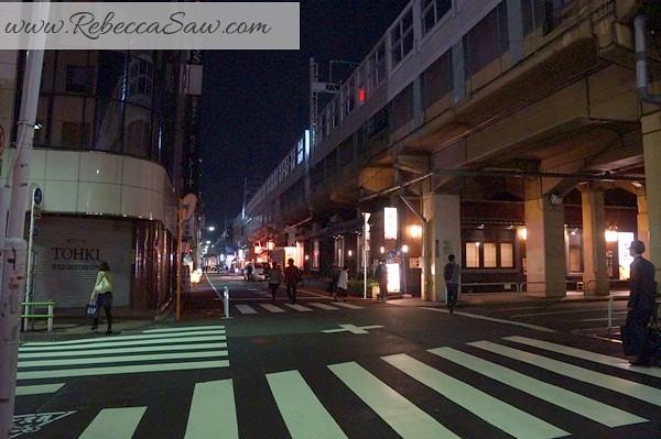 apan day 2 - Ueno, Tokyo station, akihabara-115
