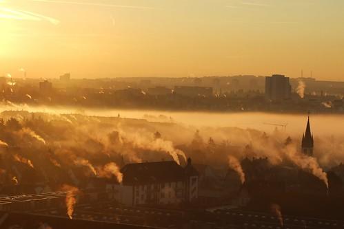 Fog in the Morning / Frühnebel