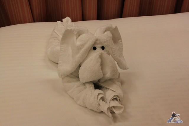 unser Gute Nacht Gruss vom Service :-) Handtuchtier plus Schokoladentäfelchen :-) Mami wo sind die Täfelchen eigentlich?