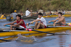 sports, rowing, recreation, outdoor recreation, watercraft rowing, leisure, boating, water sport, paddle,
