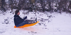 Snow means sledging