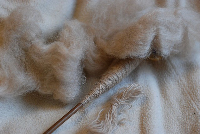 New Zealand Haunui flock Romney and NZ Halfbred roving being spindle-spun into yarn