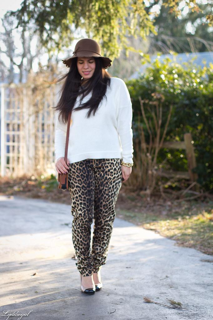 skinny leopard.jpg