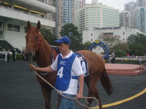 氹仔馬場 Taipa Racecourse