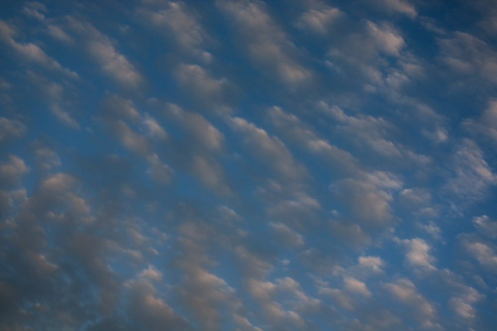 25/365 - Partly Cloudy