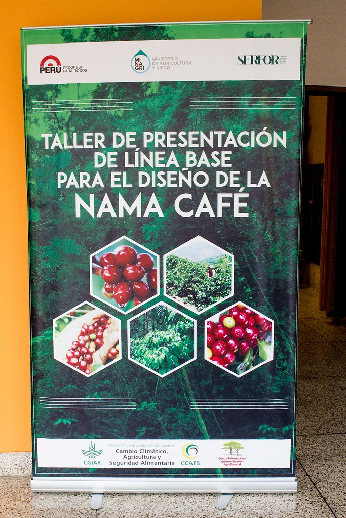 Presentation of the baseline for the design of Coffee Nama in Per