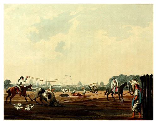 007-El matadero del sur de Buenos Aires-Picturesque illustrations of Buenos Ayres and Monte Video..-1820- Emeric Essex Vidal