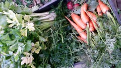 carrots, parsley and celery