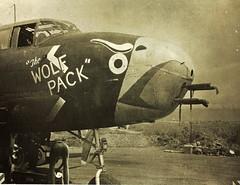 345th Bomb Group North American B-25