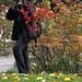 Jardin Japonais, Toulouse by K_rho