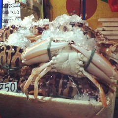 Week 42, 2012: crab