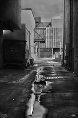 Albuquerque Alley………