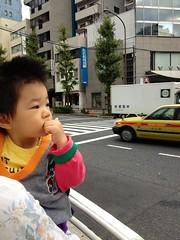 朝散歩 (2012/10/23)