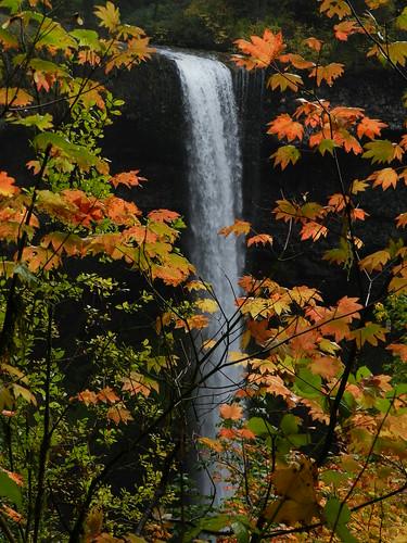 oregon silverfallsstatepark southfalls
