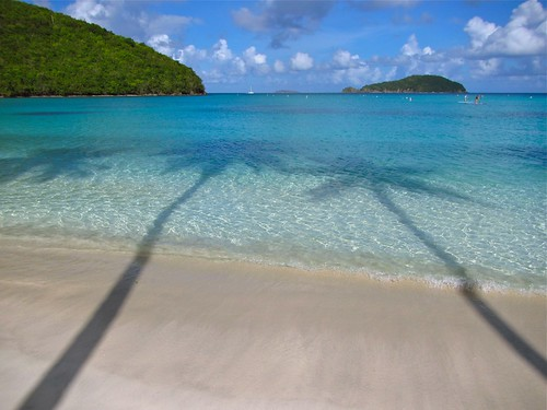 morning blue light sky beach water sunshine clouds sailboat island bay sand warm shadows bright relaxing warmth clarity peaceful sunny calm stjohn clear palmtrees tropical lush sup bouys coconuttrees mahobay paddleboarders