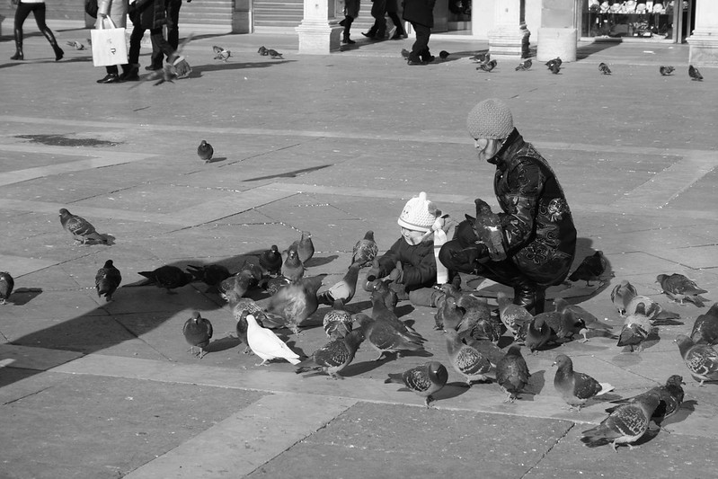 Child with birds