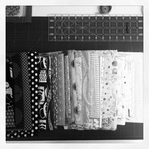 Value added fabrics in black and white