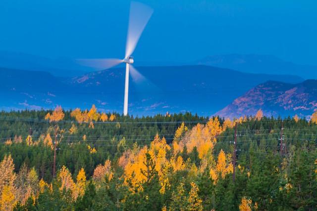 wind farm essays