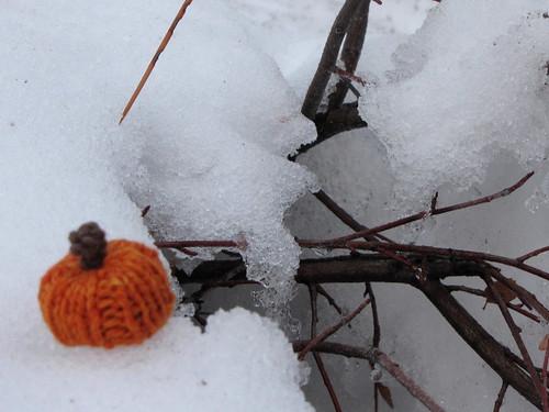 ChillyPumpkin
