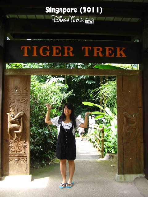 Day 3 Singapore - Zoo Singapore 06