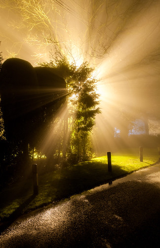 Foggy Rays!!! by D3RON