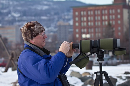 Larry Kraemer digiscoping the Slaty-backed Gull