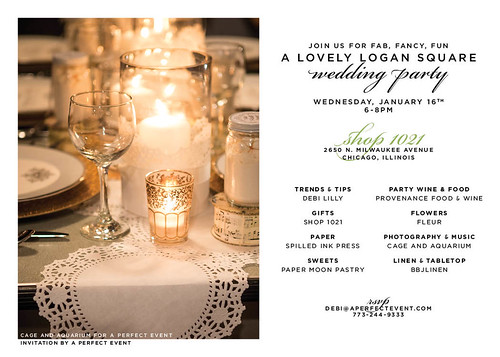 Wednesday eve - our Lovely Logan Square Wedding Party