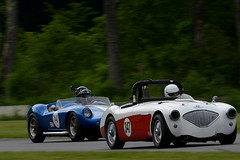 Trans-Am Racing at Lime Rock Park