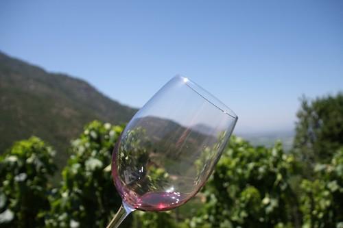 Montes wine