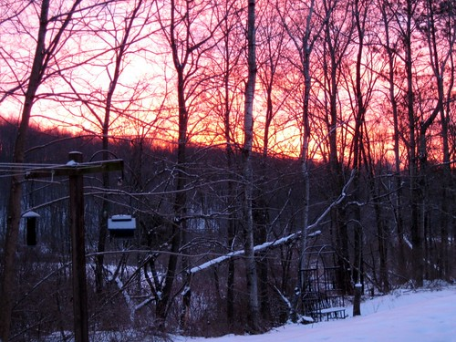 Sunrise in January by elizabeth's*whimsies