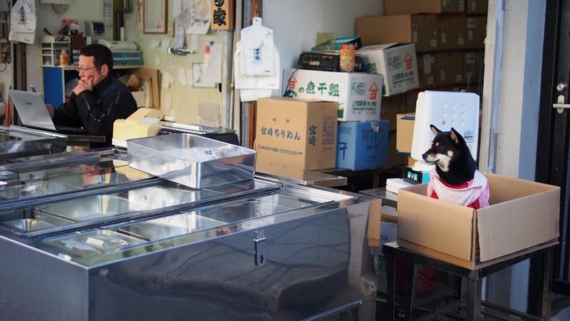 Tokyo Honeymoon 2013_day02_062