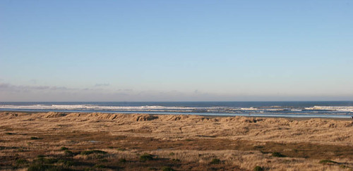 Winter Morning at Ocean Shores