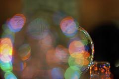 Testshot for Macro Monday turned into Bokeh Bubble