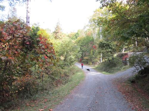 秋深まる散歩道 2012年10月13日9:43 by Poran111