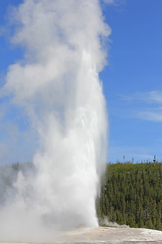Old Faithful 14
