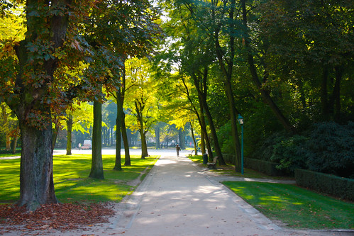 Lovely Brussels Park
