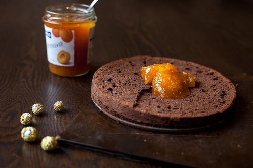 шоколадный корж и абрикосовый джем