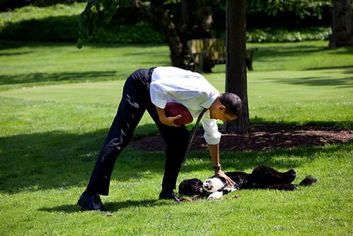 Barack and Bo 1