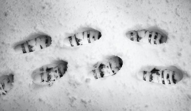 Snow steps.