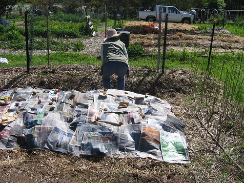 Planting potatoes - Spring 2012