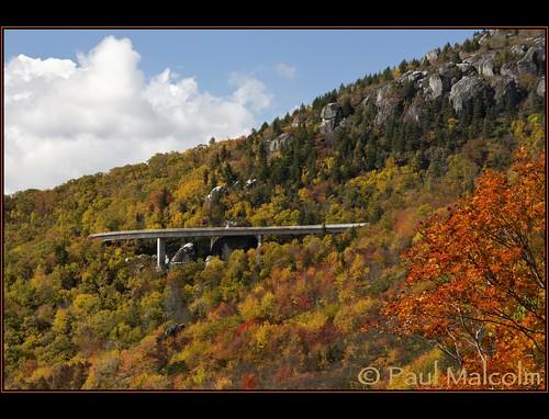 Parkway Majesty