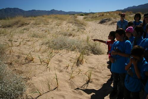 Baker - Hike Kelso Dunes
